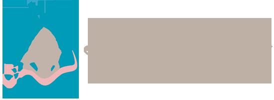 Balneario Fuencaliente Logo
